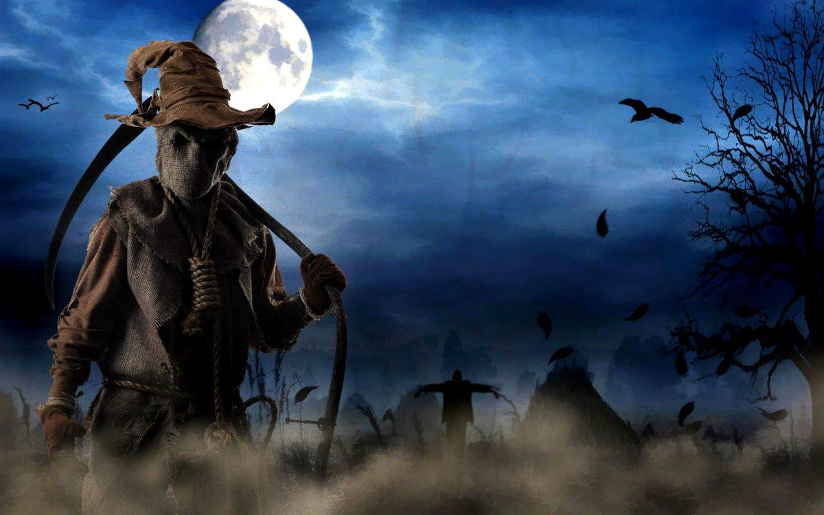 Halloween Special Recap On LTC TV Featuring Toronto | Love This City ...