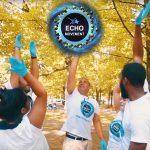 wayne-echo-movement-for-ltc-tv-article