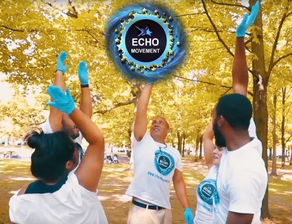 wayne-echo-movement-for-ltc-tv-article